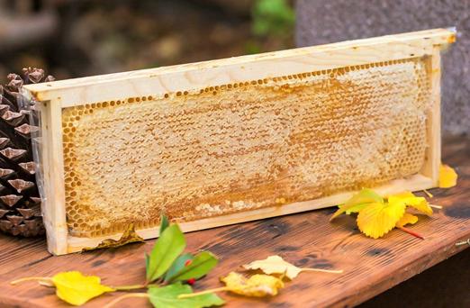 whole-honeycomb